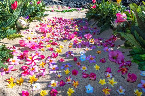Vowrenewal-wedding-in-Hawaii-2-2.jpg