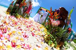 Hawaii Weddings-36