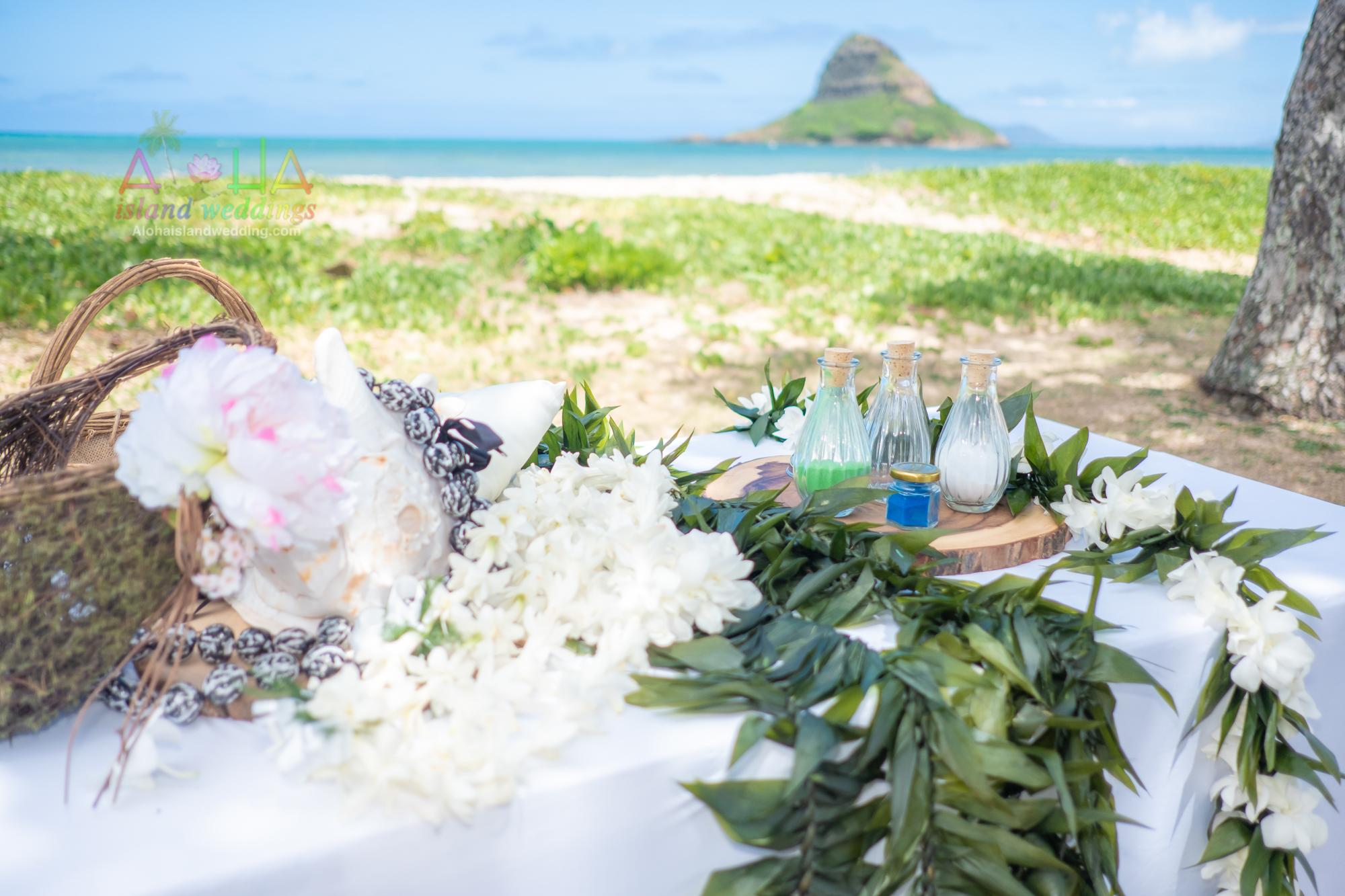 Hawaii weddings and events, Kualoa-13