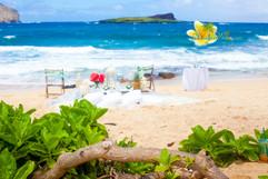 Rustic wedding in hawaii-52.jpg