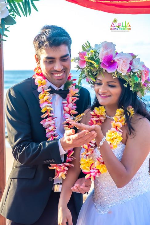 Wedding-butterfly-1-25.jpg