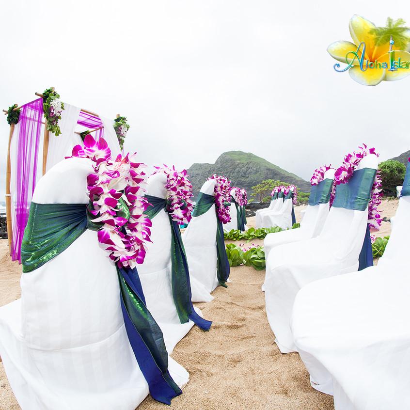Karen & Todd  Wedding in Hawaii 4