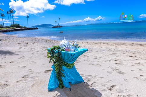 Oahu-Vowrenewal-Photography-4-13.jpg