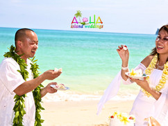 The battle is to begin Hawaiian wedding