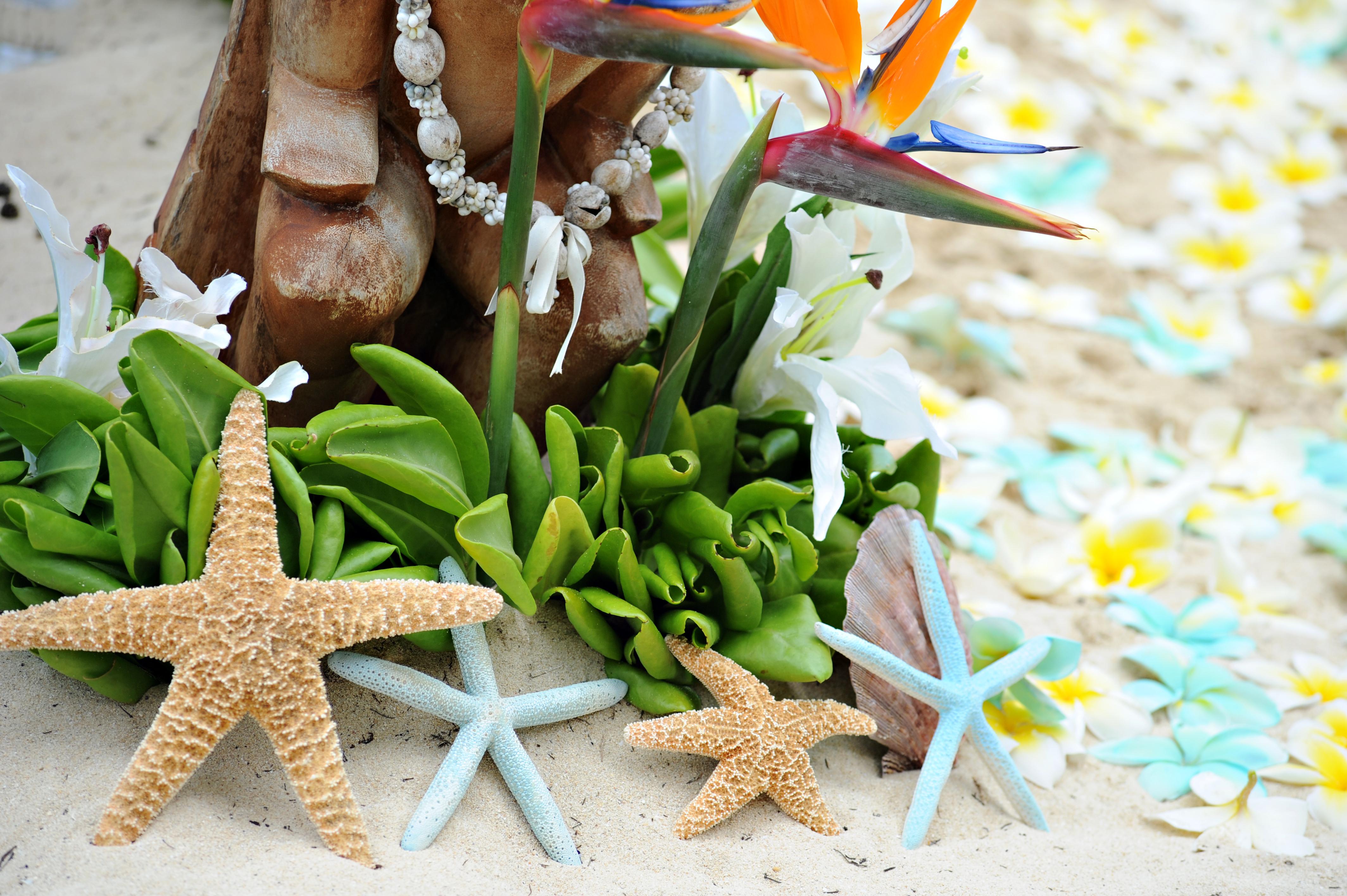 Alohaislandweddings.com- Hawaiian wedding in hawaii-39