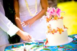 Wedding Cake in Hawaii-1