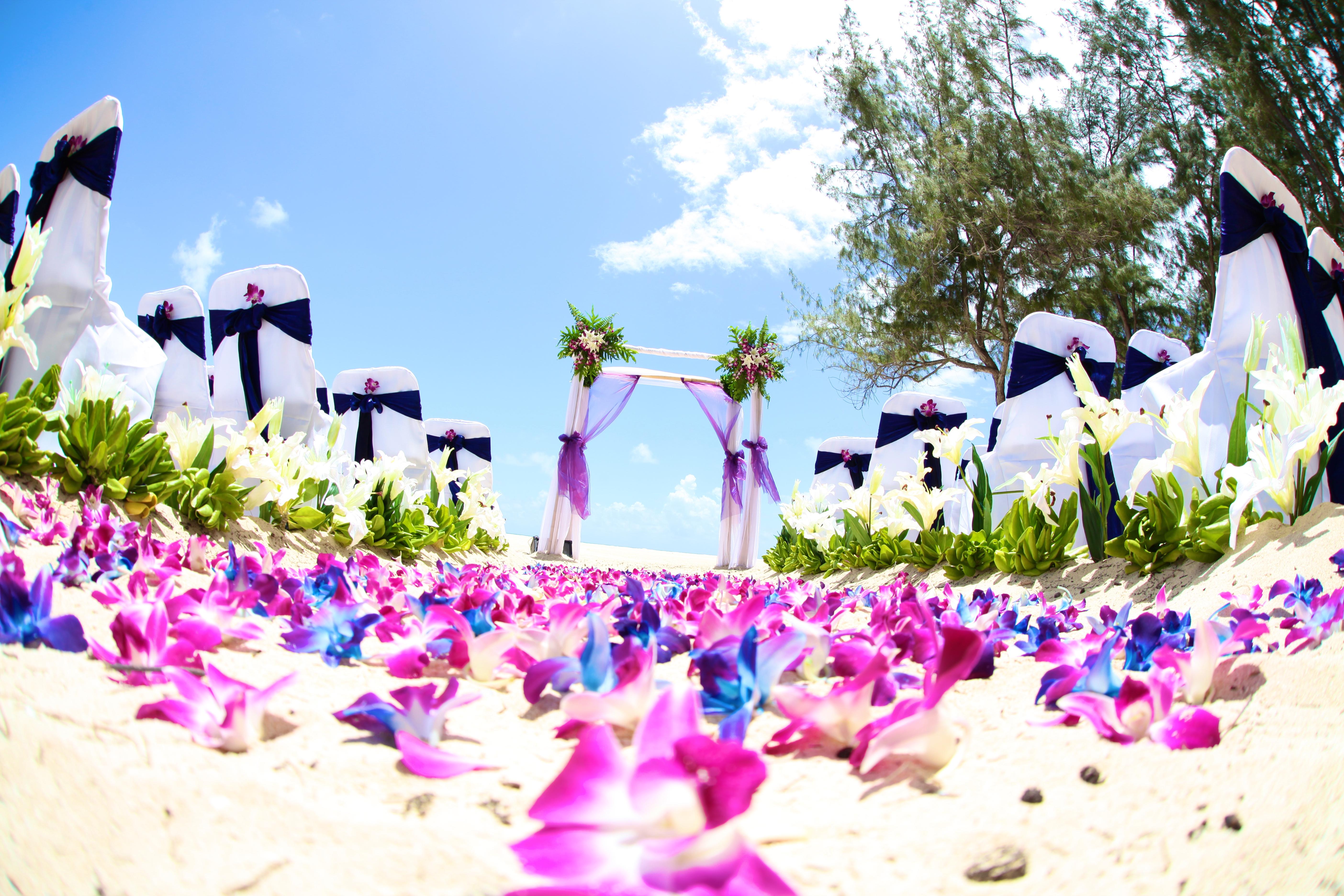Hawaii wedding Bamboo Arch 16