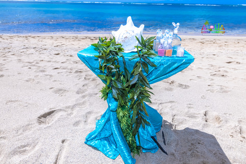 Oahu-Vowrenewal-Photography-4-10.jpg