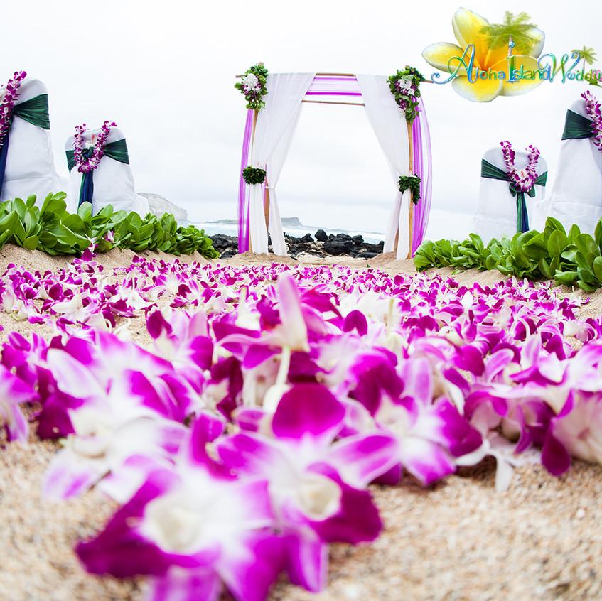Karen & Todd  Wedding in Hawaii 5