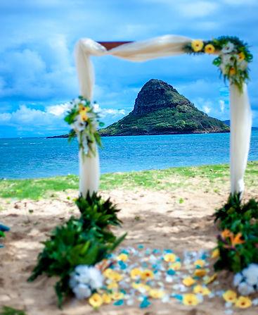 AJ-Wedding-Picture-2-logo-3.jpg