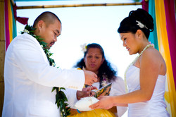 thewedding152