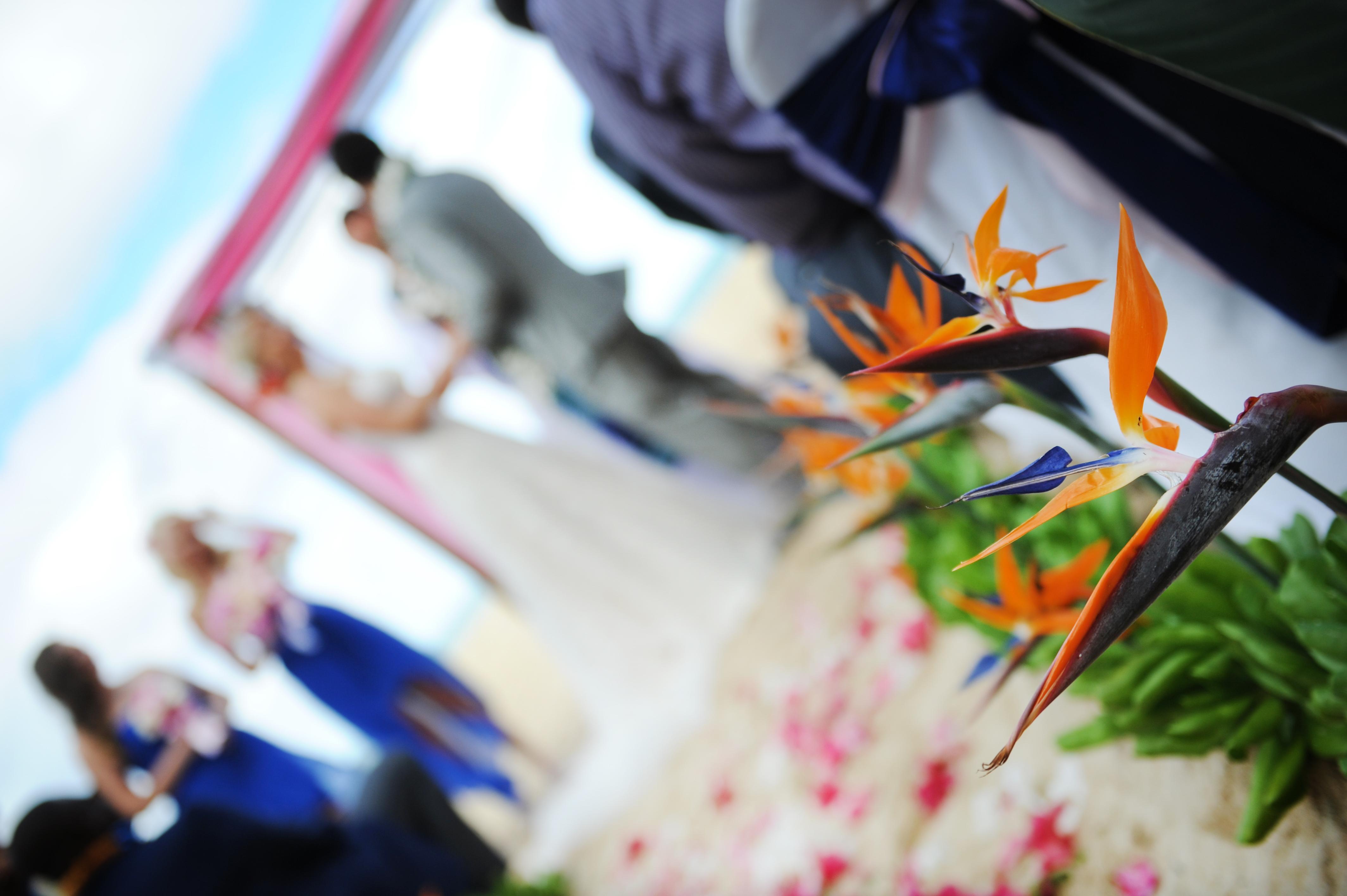 Chapel in the Sand Hawaii Wedding 5