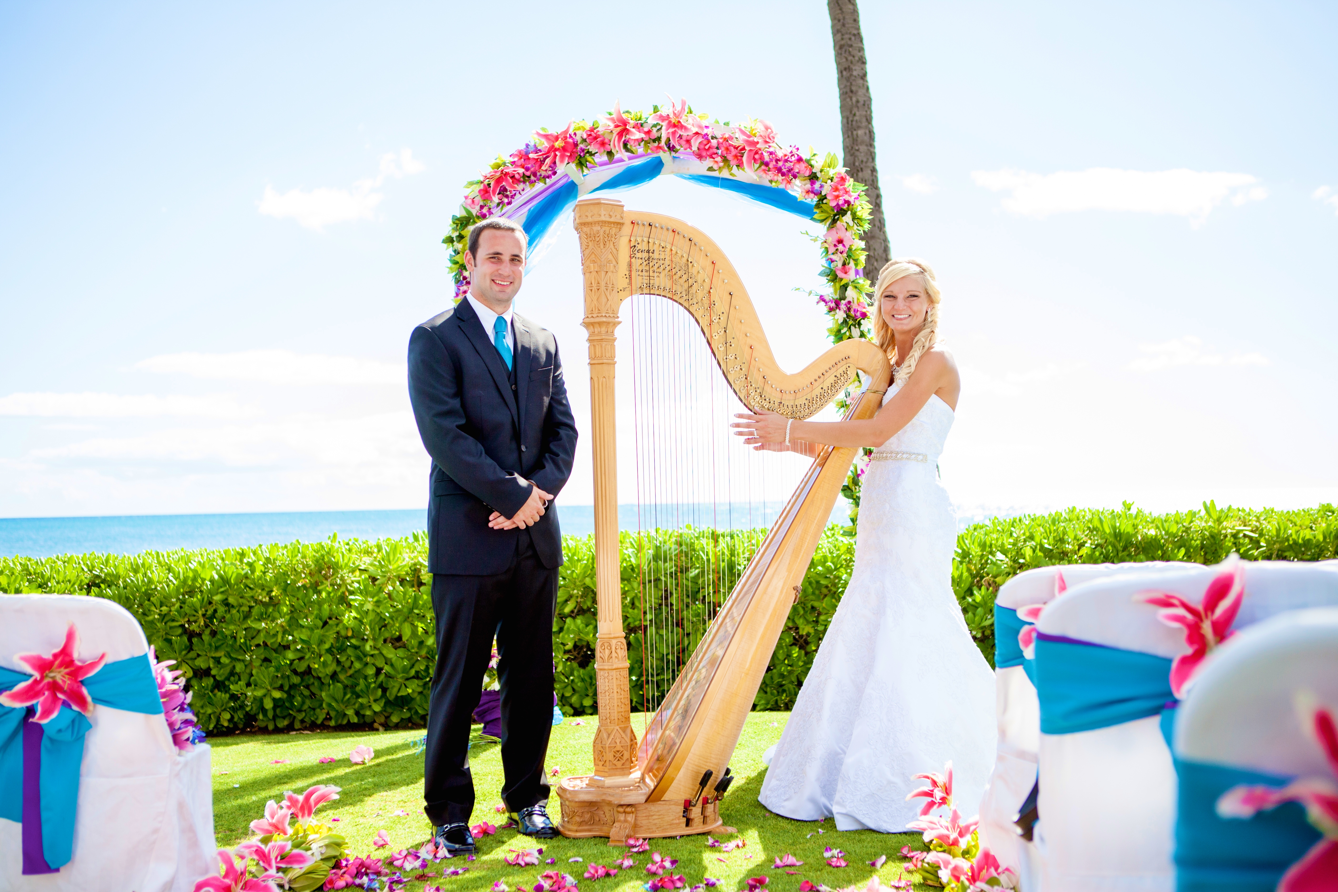 Harpist in Hawaii 5