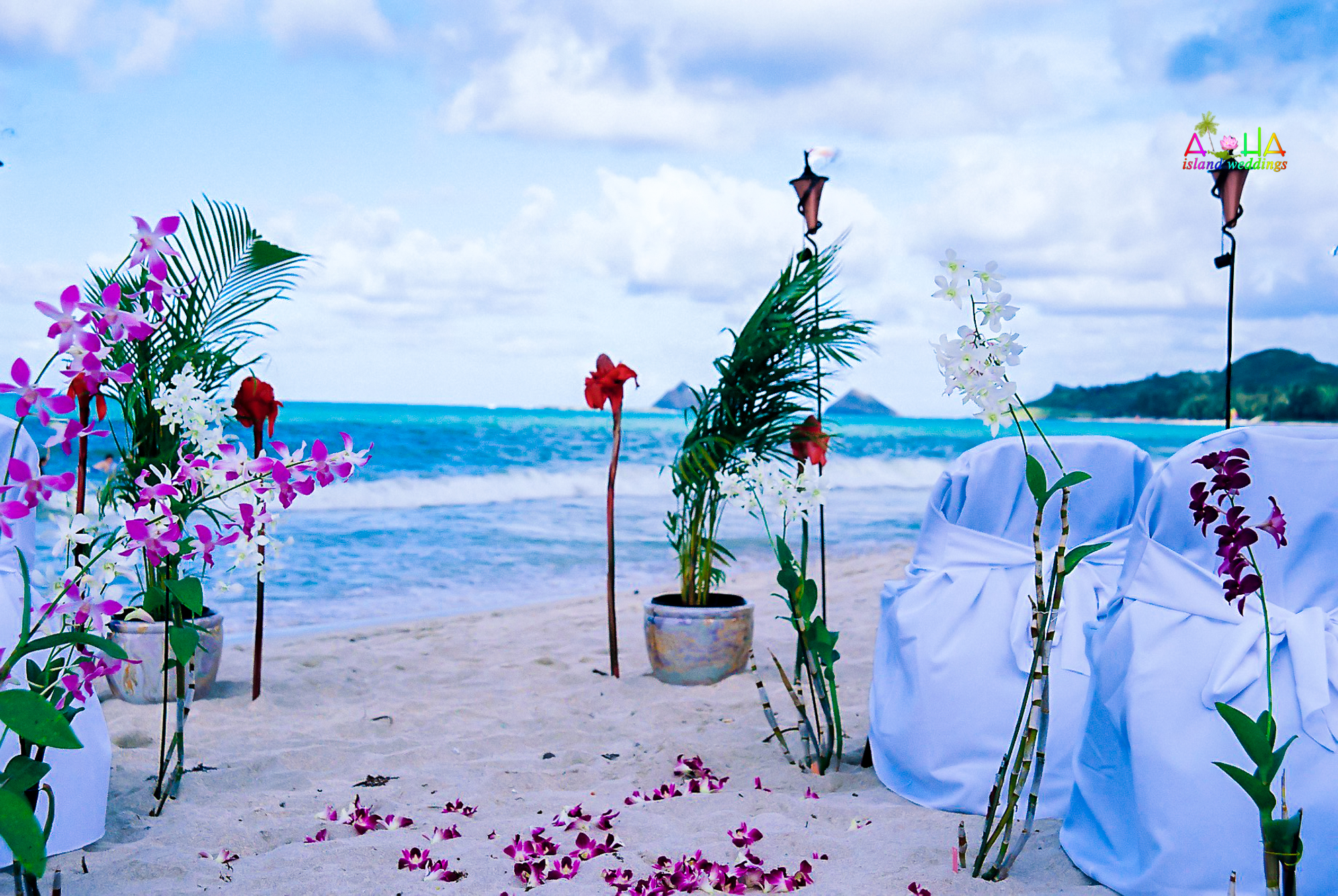 Beach wedding in Kailua-16