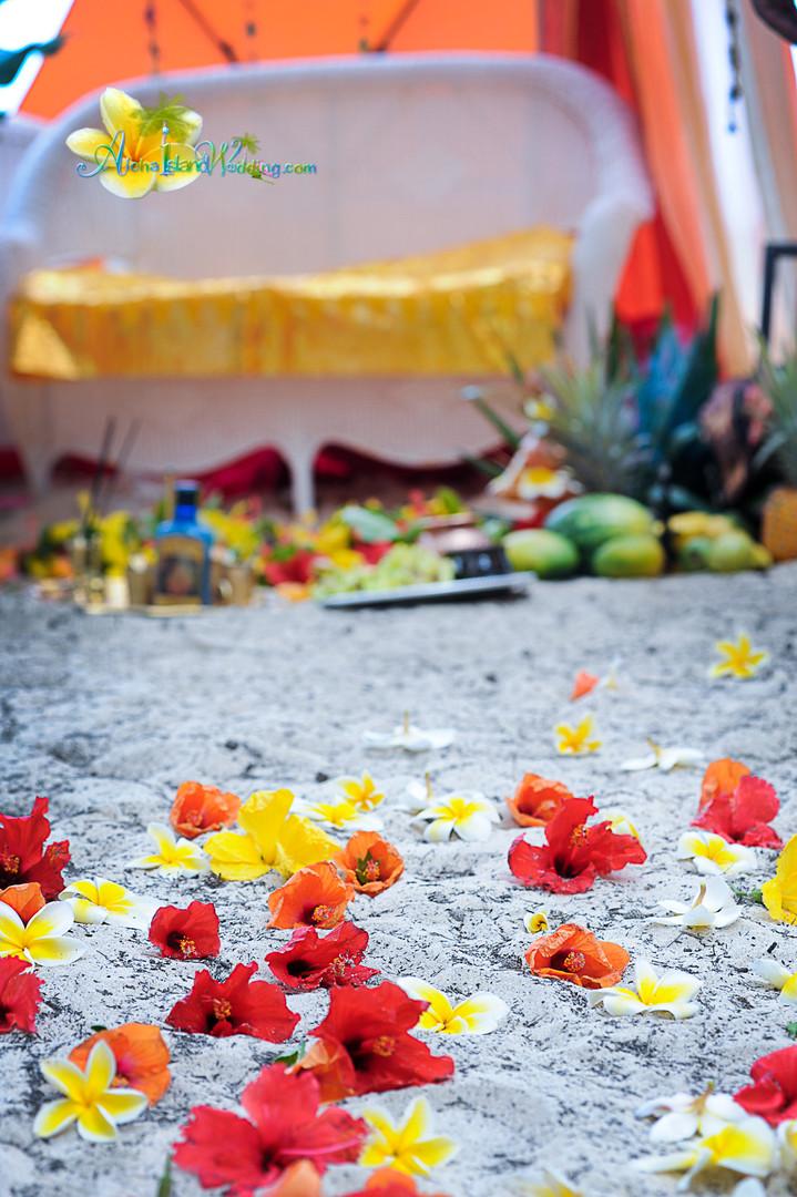 Indian wedding ceremony in hawaii-41.jpg