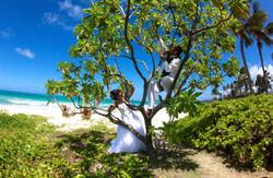 Beach Wedding Picture -17