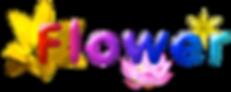 flowerhawaii
