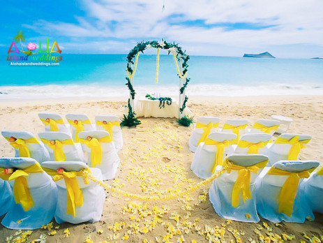 See Samples of Our  Yellowish Wedding Arch