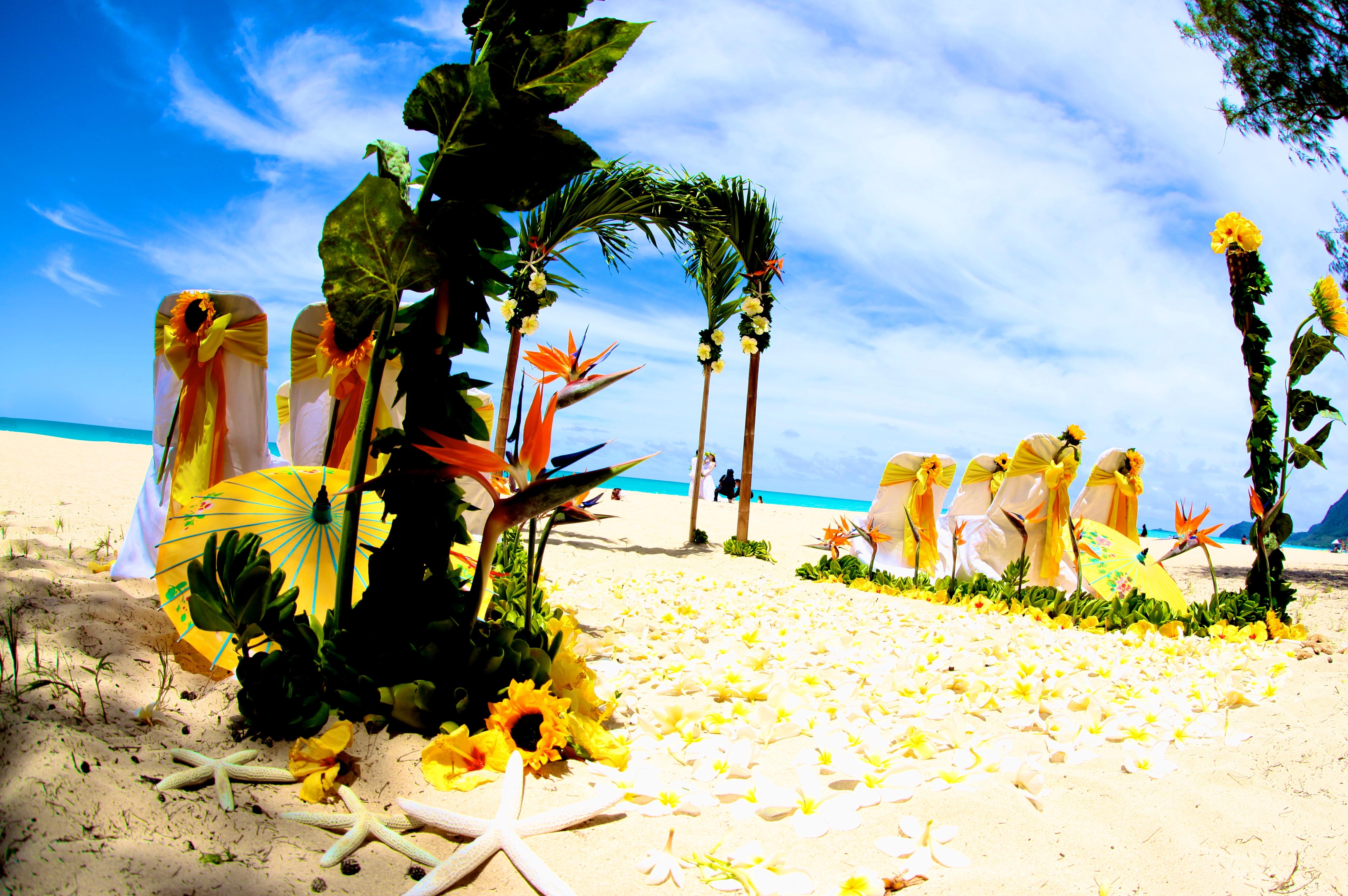 Beach wedding Hawaii 11
