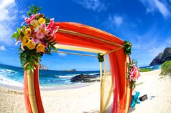 Wedding Picture1-10