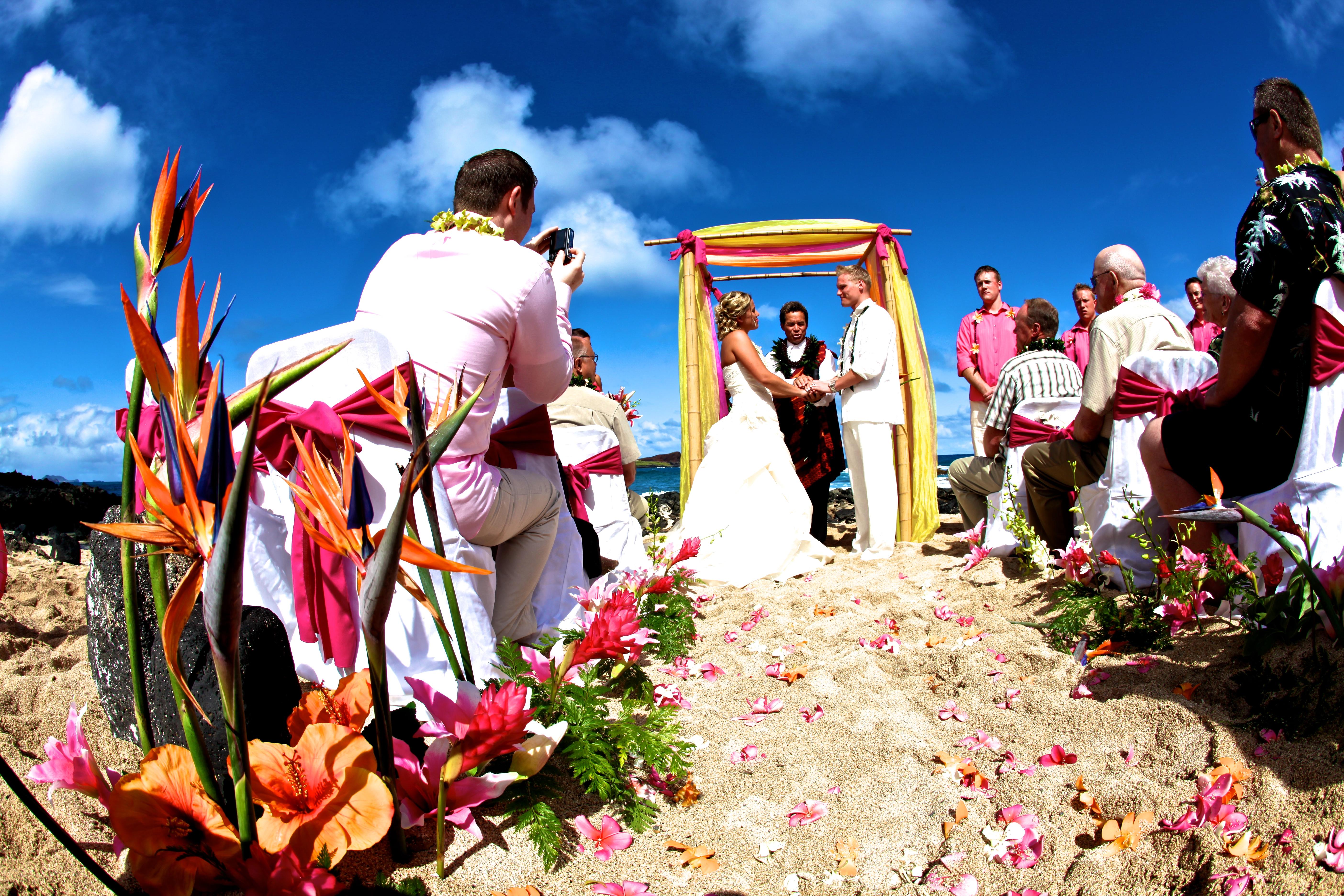 Wedding of Hawaii 1
