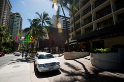 alohaislandweddings- PRE WEDDING IN HAWAII-15