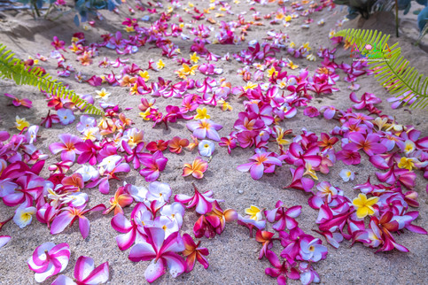 Oahu-Vowrenewal-Photography-4-5.jpg