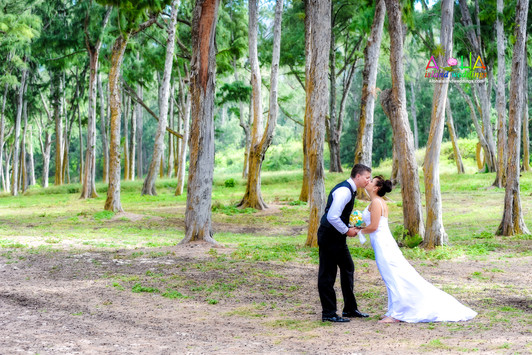 Hawaii wedding-J&R-wedding photos-366.jp