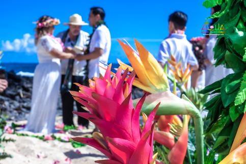 Vowrenewal-wedding-in-Hawaii-1-38.jpg