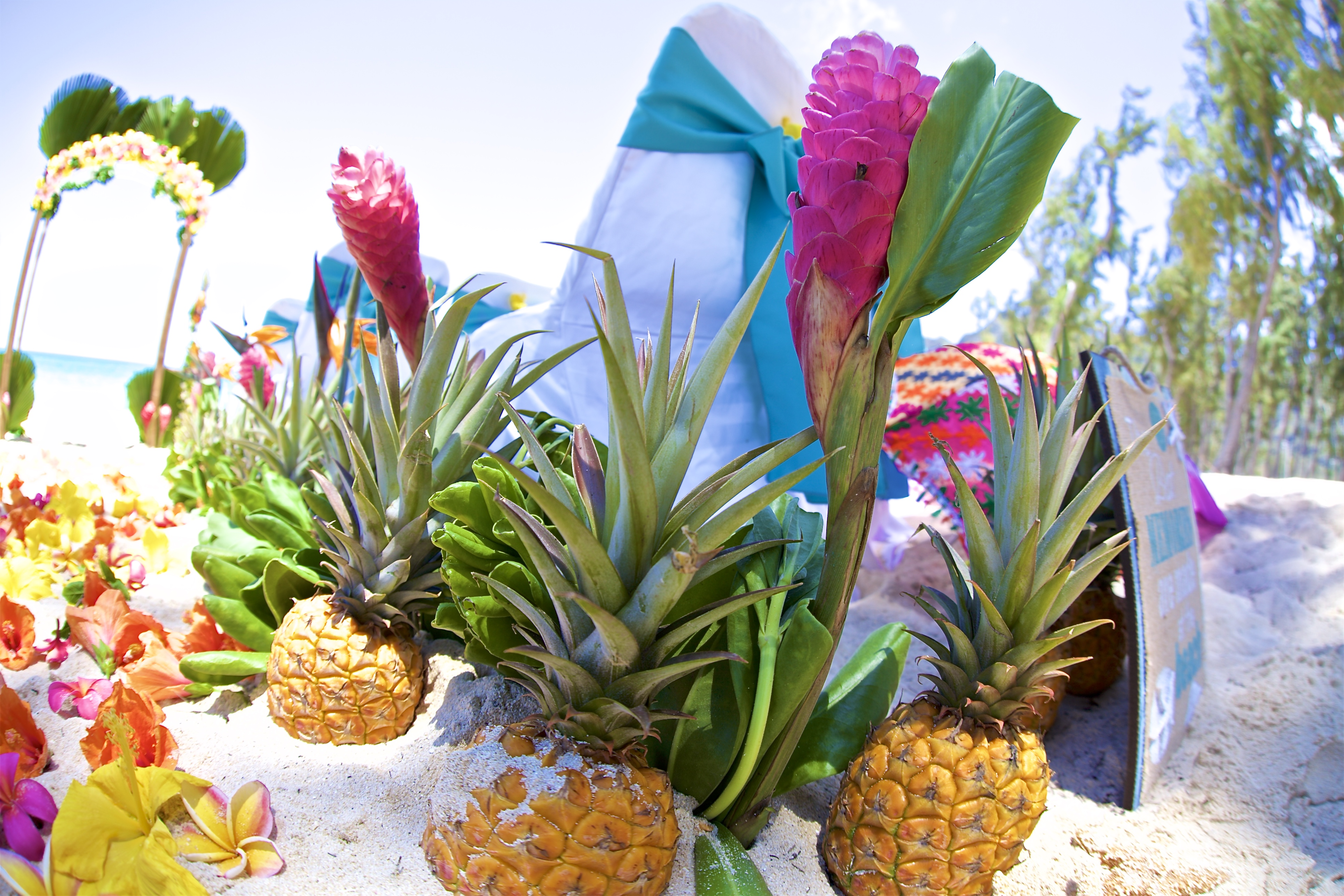 Hawaii weddings, elopements, and Hawaii vow renewals -11
