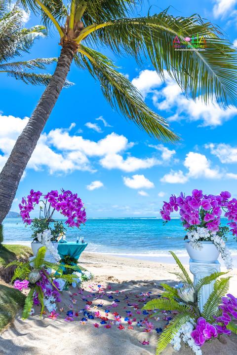 Kahala-resort-beach-in-Hawaii-2-12.jpg