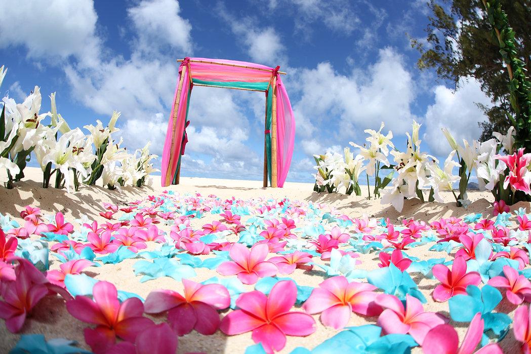Hawaii beach weddings