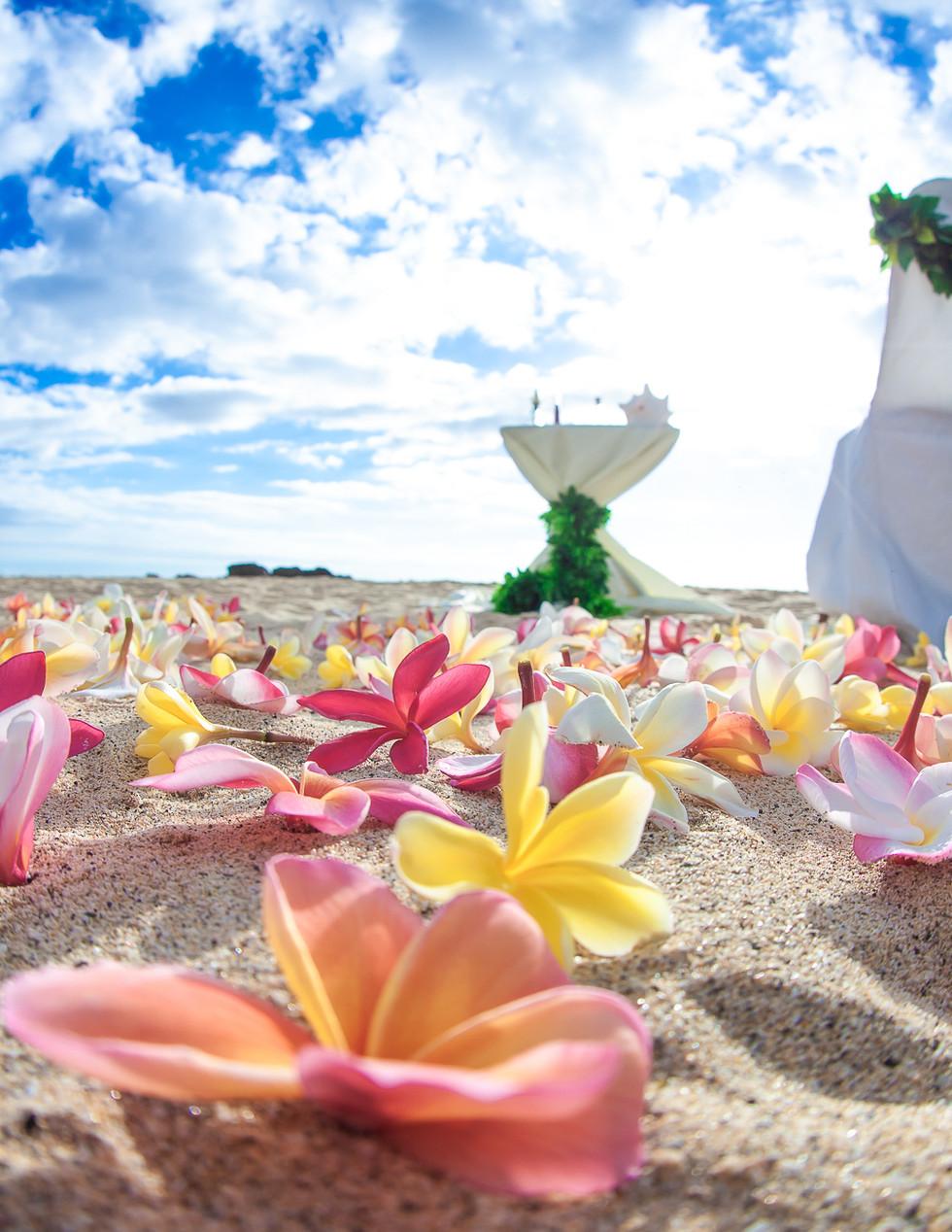 Makua-wedding-picture-3.jpg
