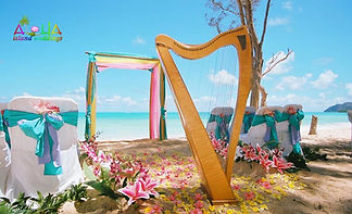 Harpist in Hawaii by Alohaislandweddings