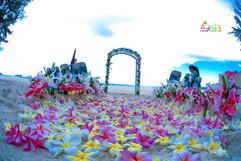 Honolulu wedding-3.jpg