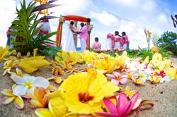 Wedding Picture1-53