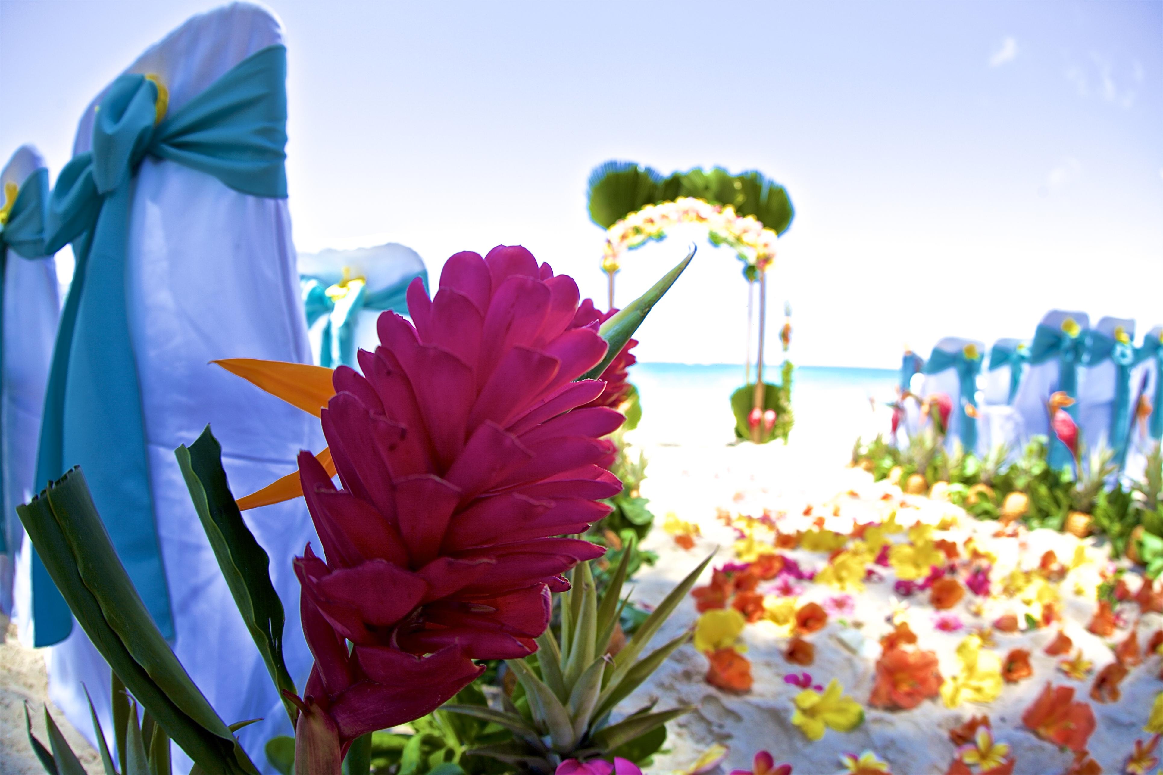 Hawaii weddings, elopements, and Hawaii vow renewals -20