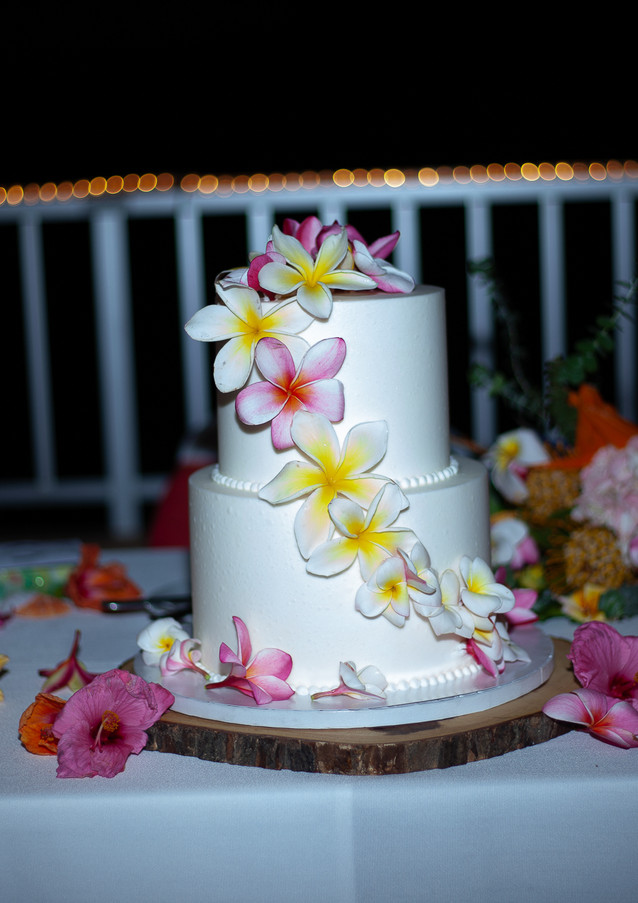 Hawaii-wedding-reception-L-71.jpg