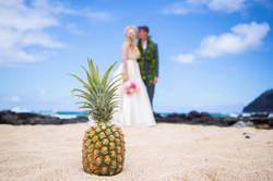 Hawaiian Wedding Pictre Romance -18