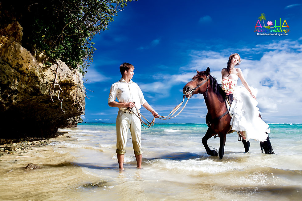 Hawaii-wedding-horse-picture-1.jpg