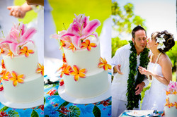 Wedding Cake in Hawaii-8