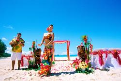 Hawaiian hula dancer with Ukulele 8