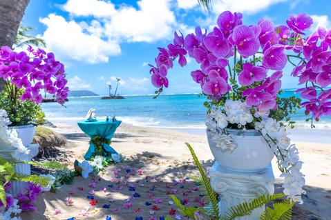 Kahala-resort-beach-in-Hawaii-2-18.jpg