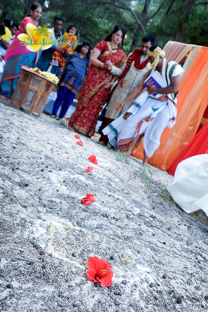Indian wedding ceremony in hawaii-102.jp