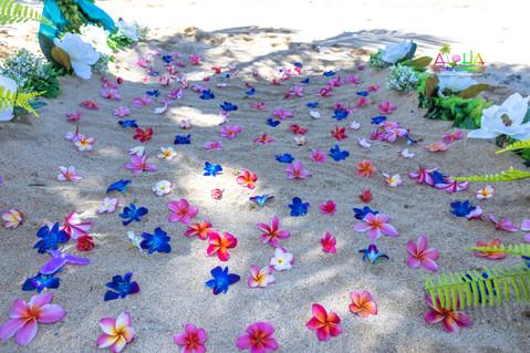 Kahala-resort-beach-in-Hawaii-2-14.jpg