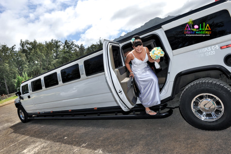 Hawaii wedding-J&R-wedding photos-24.jpg