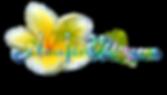 Logo alohaislandwedding with plumeria