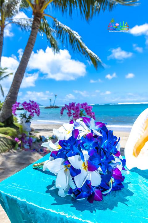 Kahala-resort-beach-in-Hawaii-2-23.jpg
