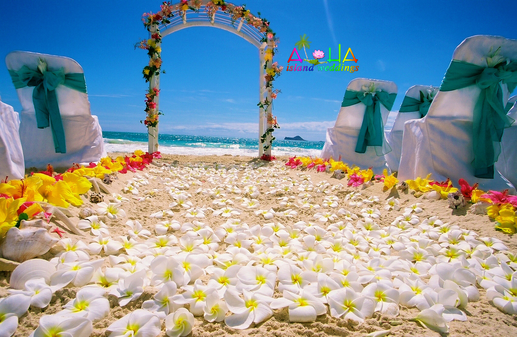 Japanese Wedding On Oahu - alohaislandweddings.com-116