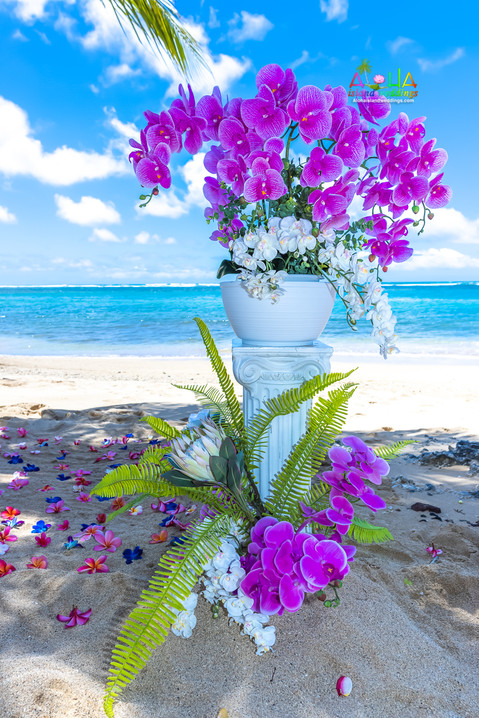 Kahala-resort-beach-in-Hawaii-2-8.jpg